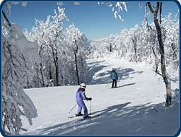 Ski Windham photo